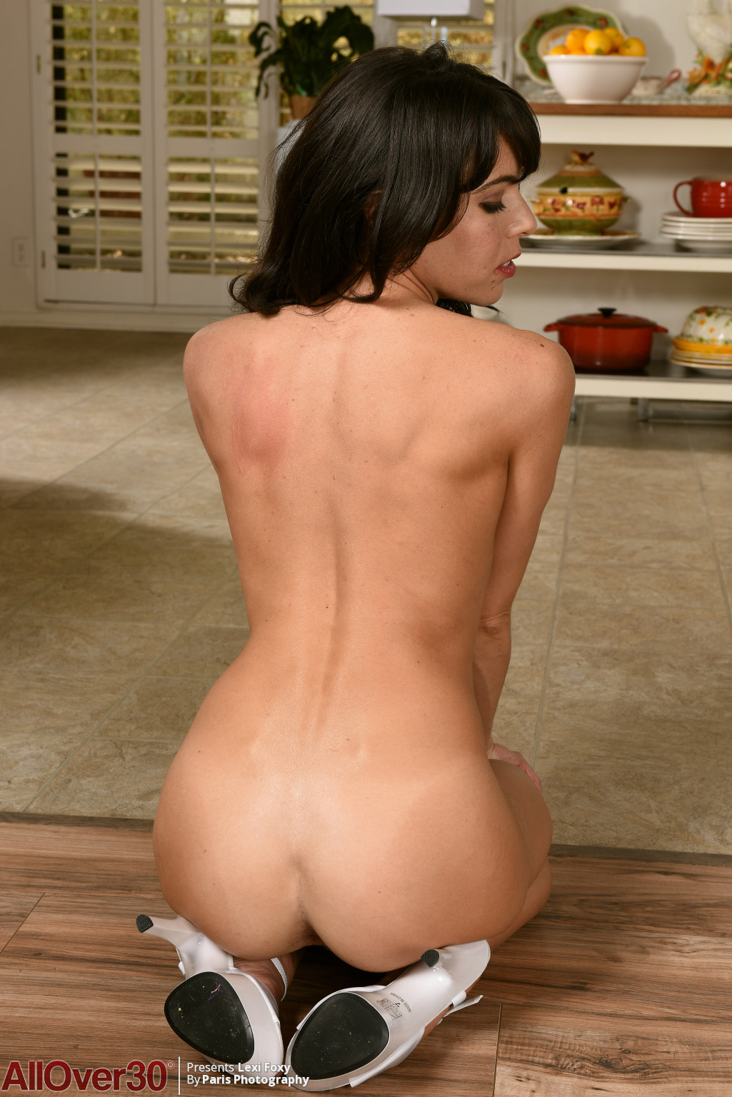 dark-haired-milf-lexi-foxy-14