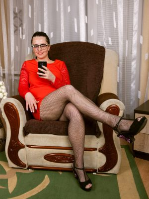Animee Fishnet Secretary